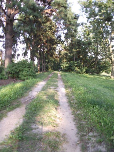 Zdjęcie Trasa nad kanalem od strony Osowej Góry